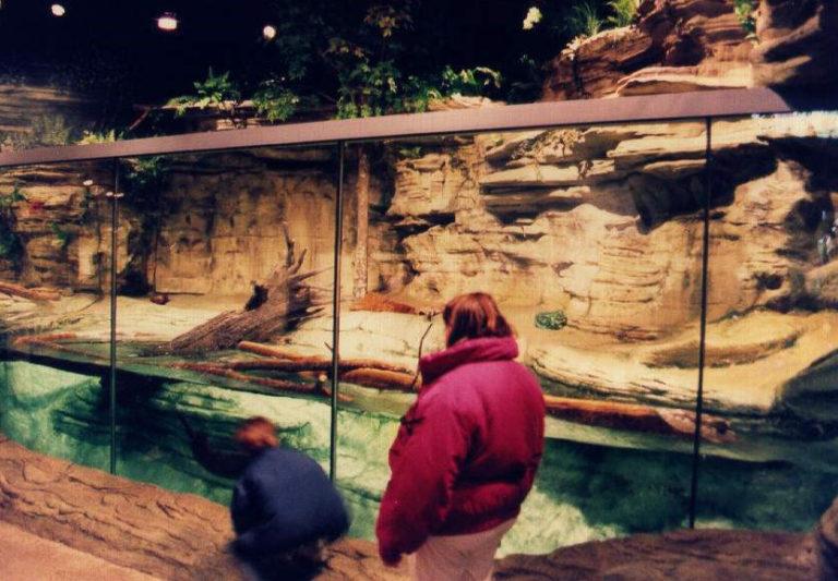 Rock Facade for Zoological Application